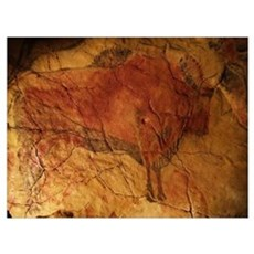 Altamira cave painting of a bison Poster