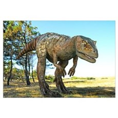 Allosaurus dinosaur, artwork Canvas Art