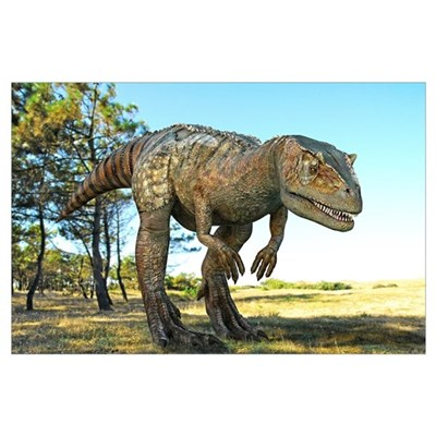 Allosaurus dinosaur, artwork Poster