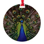 Peacock Round Ornament