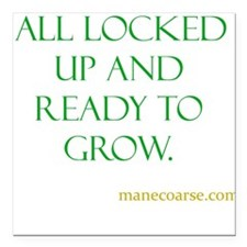 """All ready to grown Square Car Magnet 3"""" x 3"""""""
