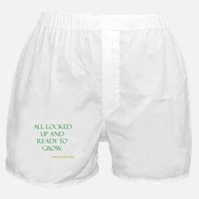 All ready to grown Boxer Shorts