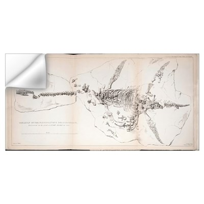 1823 First complete Plesiosaur fossil Wall Decal