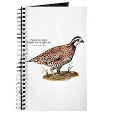 Northern Bobwhite Quail Journal
