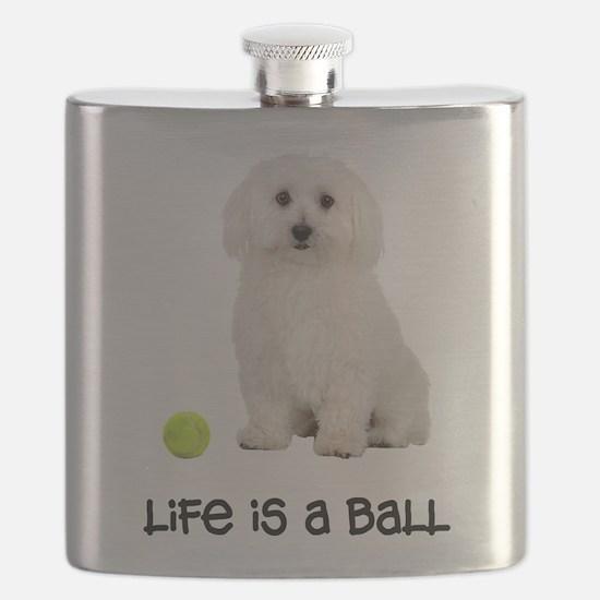 FIN-bichon-frise-life-ball.png Flask