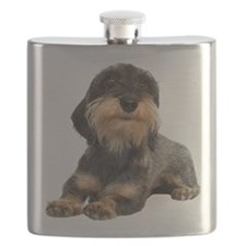FIN-wirehaired-dachshund-photo-CROP.png Flask
