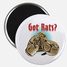 Snake Python2 Got Rats Magnet