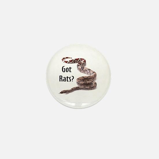 Snake Boa Got Rats Mini Button
