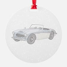 Cute Race cars Ornament