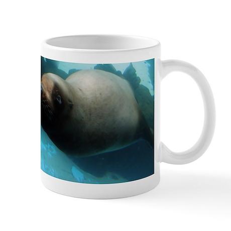 Steller sea lion 5.jpg Mug