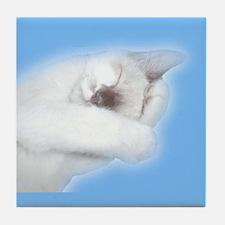 Angel Kitten Tile Coaster