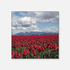 "tulips01d.png Square Sticker 3"" x 3"""