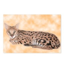 Serval Postcards (Package of 8)
