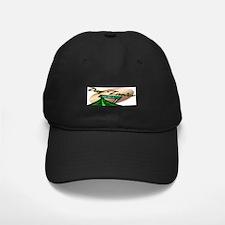 Day Trader Baseball Hat