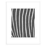 Zebra Print Small Poster