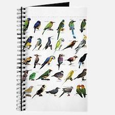 Tropical Birds Journal