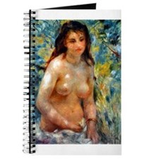 Renoir - Effect of Sunlight Journal