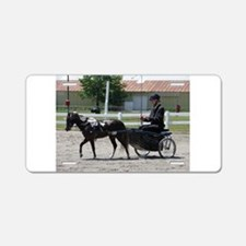HORSE AND BUGGY™ Aluminum License Plate