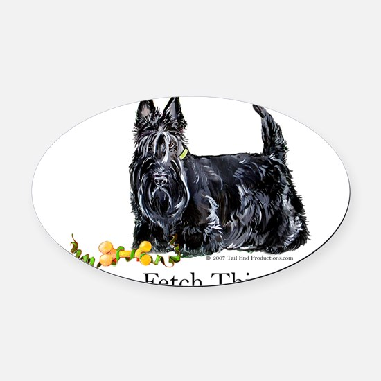 Fetch This.png Oval Car Magnet