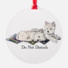 Do Not disturb 12x5.png 2.png Ornament