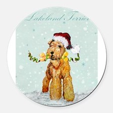 AireWels Lakeland Irish winter wonderland.png Roun
