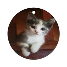 Tabby The Adorable Kitten Ornament (Round)