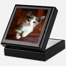 Tabby The Adorable Kitten Keepsake Box