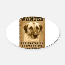 9-Wanted _V2.png Oval Car Magnet