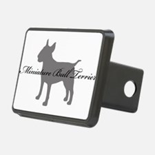 4-greysilhouette2.png Hitch Cover