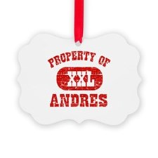 Property Of Andres Ornament