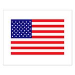 USA flag Small Poster