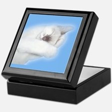 Angel Kitten Keepsake Box
