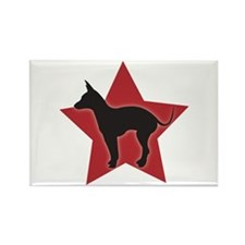 Mexican Hairless Rectangle Magnet