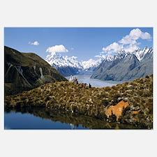 Horse Trekking Mt Cook New Zealand