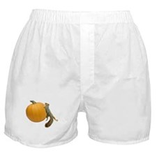 Squirrel Rolling Pumpkin Boxer Shorts