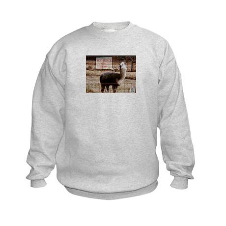 You Shall Not Pass Drama Llama Kids Sweatshirt