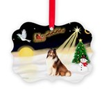 Night Flight/Sheltie Picture Ornament
