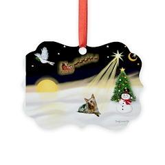 Night Flight/ Silky Ter 14 Ornament