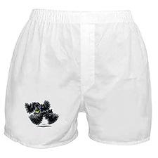 Black Cocker Spaniel Play Boxer Shorts