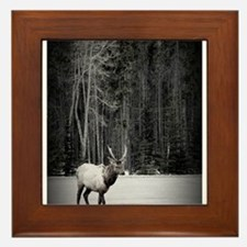 elk with birch tree Framed Tile