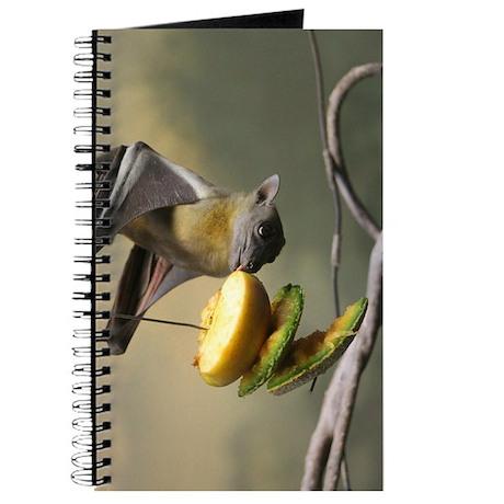 Straw-colored fruit bat.jpg Journal