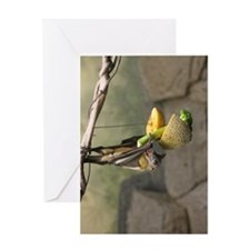 Straw-colored fruit bat 5.jpg Greeting Card