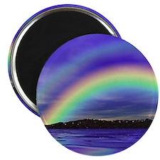 DOUBLE RAINBOW 1 Magnet
