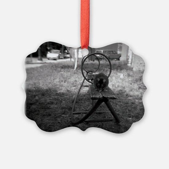 Holga Rat on a See-Saw Ornament
