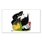 Japanese Bantam Group Sticker (Rectangle 50 pk)