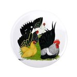 "Japanese Bantam Group 3.5"" Button"