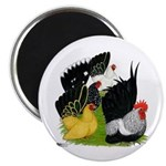 "Japanese Bantam Group 2.25"" Magnet (100 pack)"