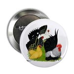 "Japanese Bantam Group 2.25"" Button (100 pack)"