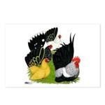 Japanese Bantam Group Postcards (Package of 8)