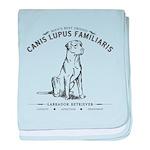 Vintage Labrador baby blanket